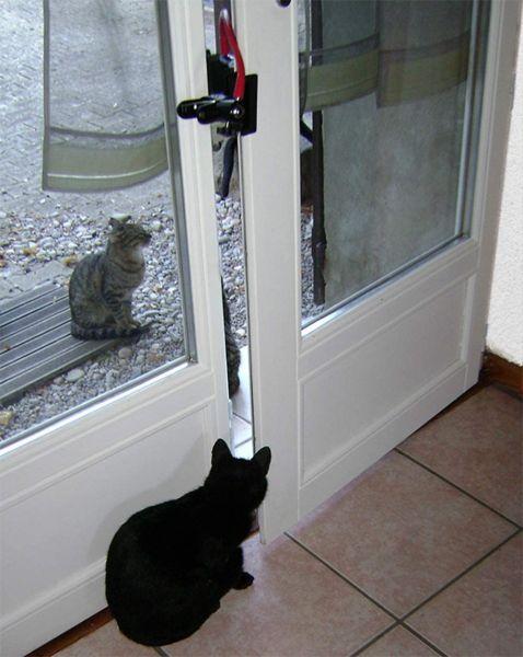 Courandair window blocker