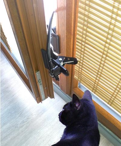 Entrebâilleur position sécurité chat