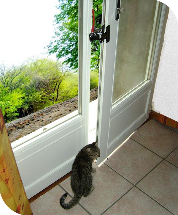 Entrebâilleur pour chat et animal Courandair